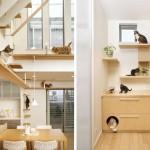 Дизайн за домашни любимци